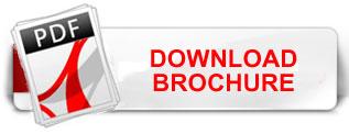download-pdf-button.jpg