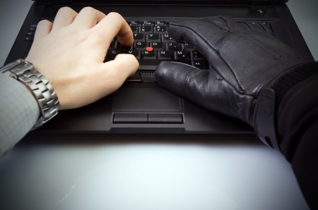 Protecting Against Online Financial Data Theft